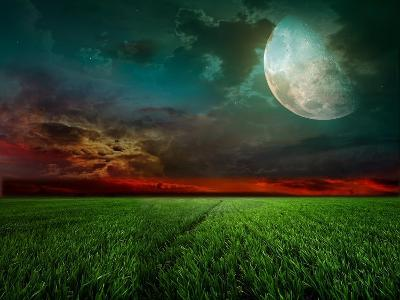 Young Wheat Field At Night With The Moonlight-Krivosheev Vitaly-Art Print