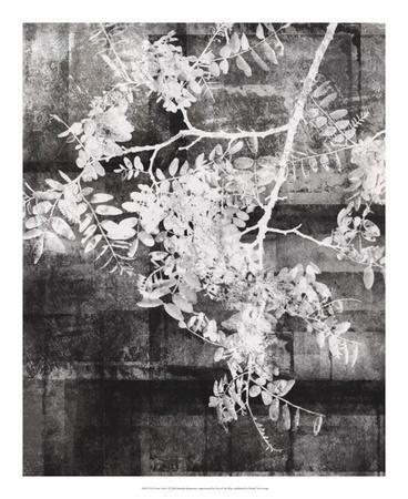 https://imgc.artprintimages.com/img/print/your-year-i_u-l-f8sx4b0.jpg?p=0