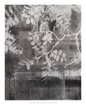 https://imgc.artprintimages.com/img/print/your-year-ii_u-l-f8sx4c0.jpg?p=0