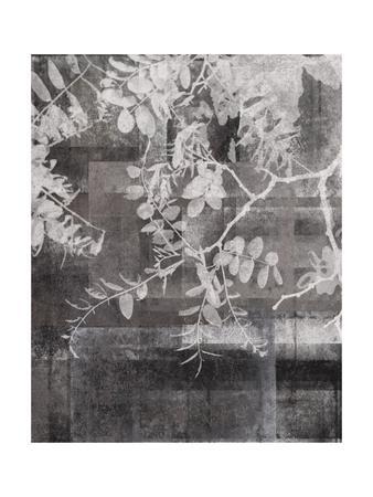 https://imgc.artprintimages.com/img/print/your-year-ii_u-l-q19bhok0.jpg?p=0