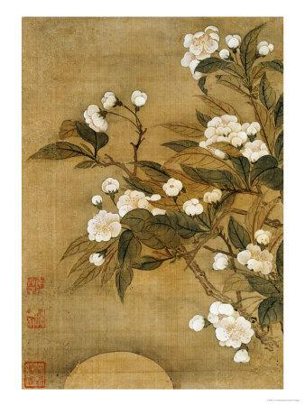 Pear Blossom and Moon