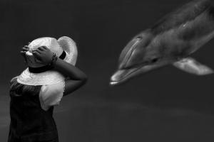 Close Encounter ... by Yvette Depaepe