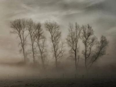How Nature Hides the Wrinkles of Her Antiquity Under Morning Fog and Dew