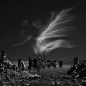 Mono Lake's Tufa Cathedral by Yvette Depaepe