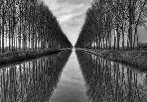 Vanished To The Infinite by Yvette Depaepe