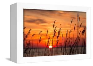 Peaceful Chesapeake Bay Sunrise in Calvert County, Maryland. by Yvonne Navalaney