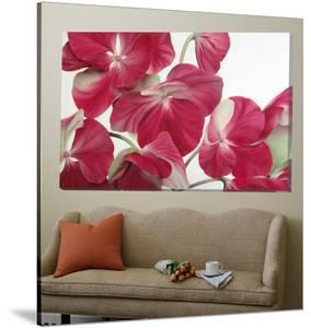 Orchid Symphony by Yvonne Poelstra-Holzaus