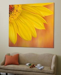 Sunflower II by Yvonne Poelstra-Holzaus