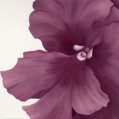 Violet Flower I