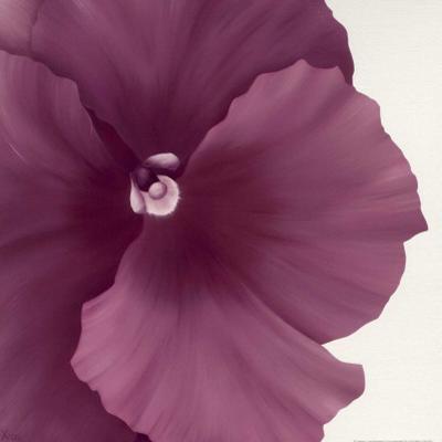 Violet Flower II