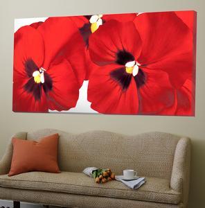 Red I by Yvonne Polestra-Holzhaus