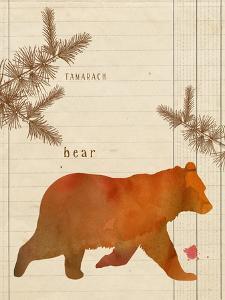 Forest Bear by Z Studio