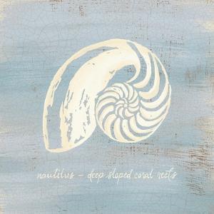 Imperial Nautilus by Z Studio
