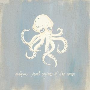 Imperial Octopus by Z Studio