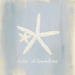 Imperial Starfish by Z Studio