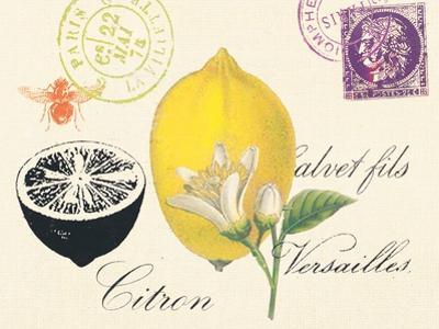 Lemon Letter