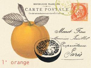 Orange Letter by Z Studio