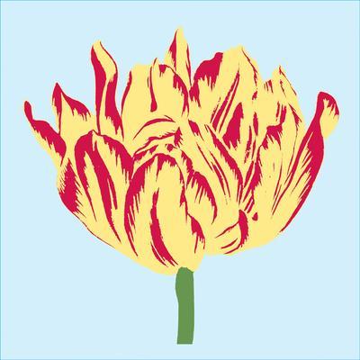 Soho Tulip II