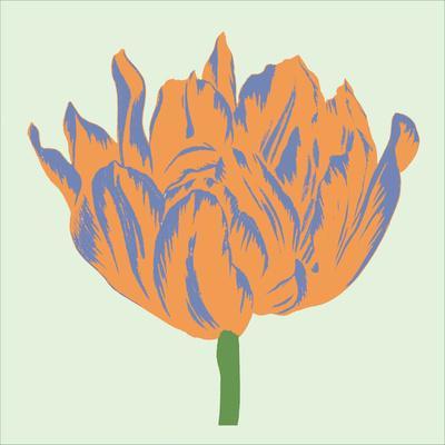 Soho Tulip III