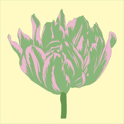 Soho Tulip IV