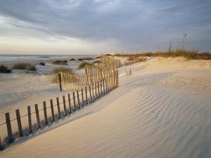 USA, South Carolina, Huntington Beach State Park by Zandria Muench Beraldo