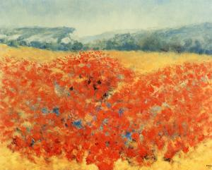 Poppy Field in Provence by Zarou