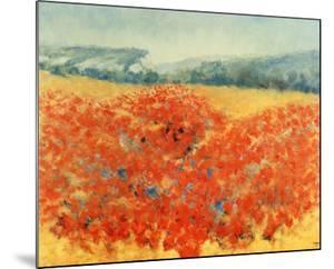 Poppy Field in Provence by Zarou