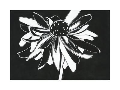 https://imgc.artprintimages.com/img/print/zealous-bloom_u-l-q1bkjp70.jpg?p=0