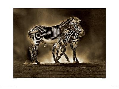 Zebra Grevys-Marina Cano-Giclee Print
