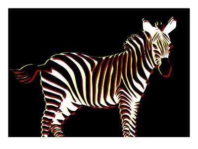 Zebra in Black Horizontal-Ikuko Kowada-Giclee Print