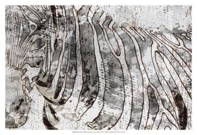 Zebra Mix-Irena Orlov-Art Print
