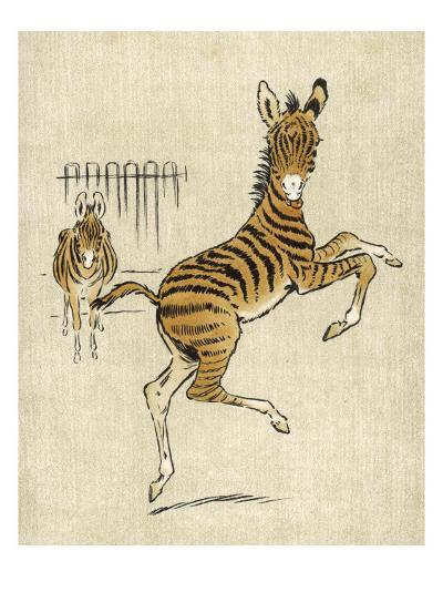 Zebra Mother and Young--Giclee Print