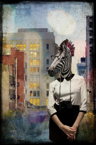 Zebra Strolling the High Line--Premium Giclee Print
