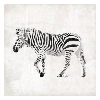 https://imgc.artprintimages.com/img/print/zebra_u-l-f6fzb10.jpg?p=0