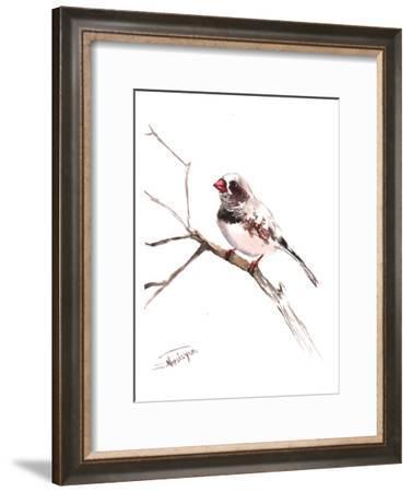 Zebrafinch 2-Suren Nersisyan-Framed Art Print
