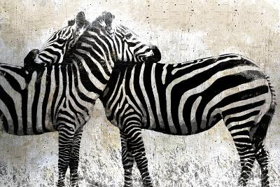 Zebras--Art Print