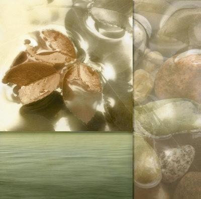 https://imgc.artprintimages.com/img/print/zen-elements-i_u-l-f2jdzz0.jpg?p=0