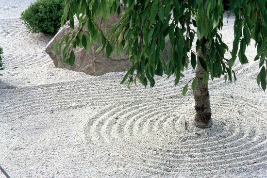 Zen Garden Showing Sand Circles--Photographic Print