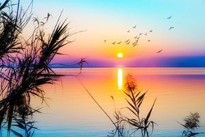 Zen Landscape of a Colorful Sunset