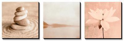 Zen Nature Triptych--Canvas Art Set