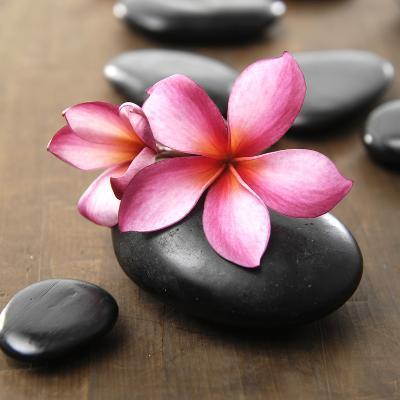 Zen Pebbles--Photographic Print