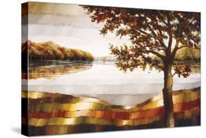 Lake Mamry by Zenon Burdy