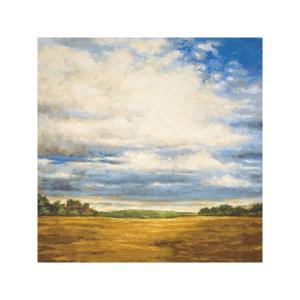 Tranquil Meadow by Zenon Burdy