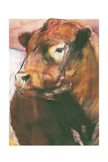 Zeus, Red Belted Galloway Bull, 2006 (Detail)-Mark Adlington-Giclee Print