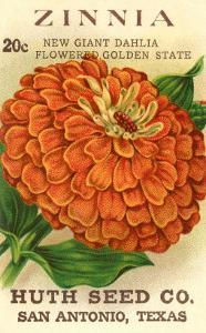 Zinnia Seed Packet