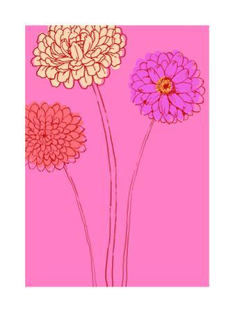 Zinnias on Pink Background