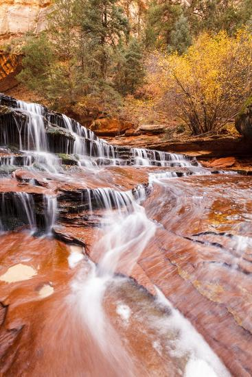Zion NP, Utah, USA: Archangel Waterfall Of River Left Fork Of North Creek Along Hike To The Subway-Axel Brunst-Photographic Print