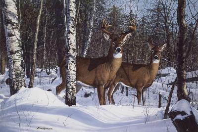 Zone 1 Whitetail-Bruce Miller-Giclee Print