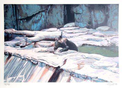 Zoo Bear-Fran Bull-Limited Edition