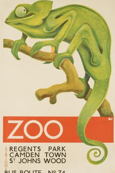 Zoo, Iguana London Bus Route No. 74 Advertising Poster-David Pollack-Photographic Print
